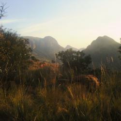 Abendstimmung in Marakele Nationalpark
