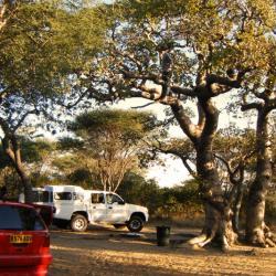 Khama Rhino Campsite im März