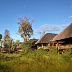 Chalets - Nata Lodge