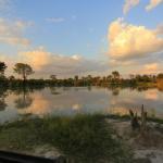 Kwando Kwara Okavango Delta - Reflexion im Wasser