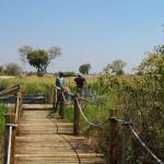 Mboma Island Boat Station im Moremi Nationalpark