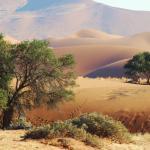 Die Namib Wüste © Kalahari Calling