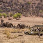 Safarifahrt auf den Gelände der Hobatere Lodge in Namibia