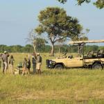 Safarifahrt im Somalisa Acacia Camp