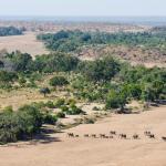 Der Limpopo Fluss in der Tuli Wilderness