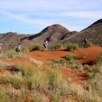 Wanderung auf dem Tok Tokkie Trail in Namibia