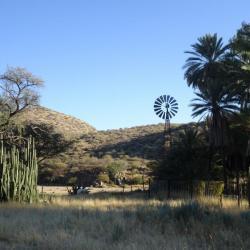 Selbstfahrer Namibia - Düsternbrook