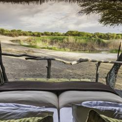Treetops Camp Ausblick vom Bett