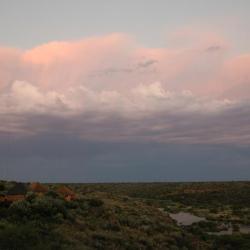Lilydale Restcamp Mokala NP - Selbstfahrer Südafrika