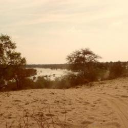 Blick auf den Boteti River (Kumaga)