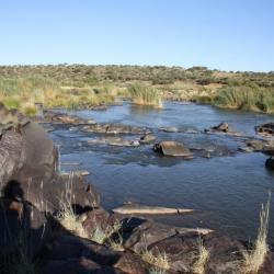 Mokala Nationalpark in Südafrika - Kalahari Calling UG