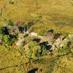 Inseln im Okavango Delta