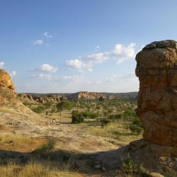 Landschaft im Tuli Reserve