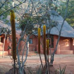 Venda Village - © Kalahari Calling