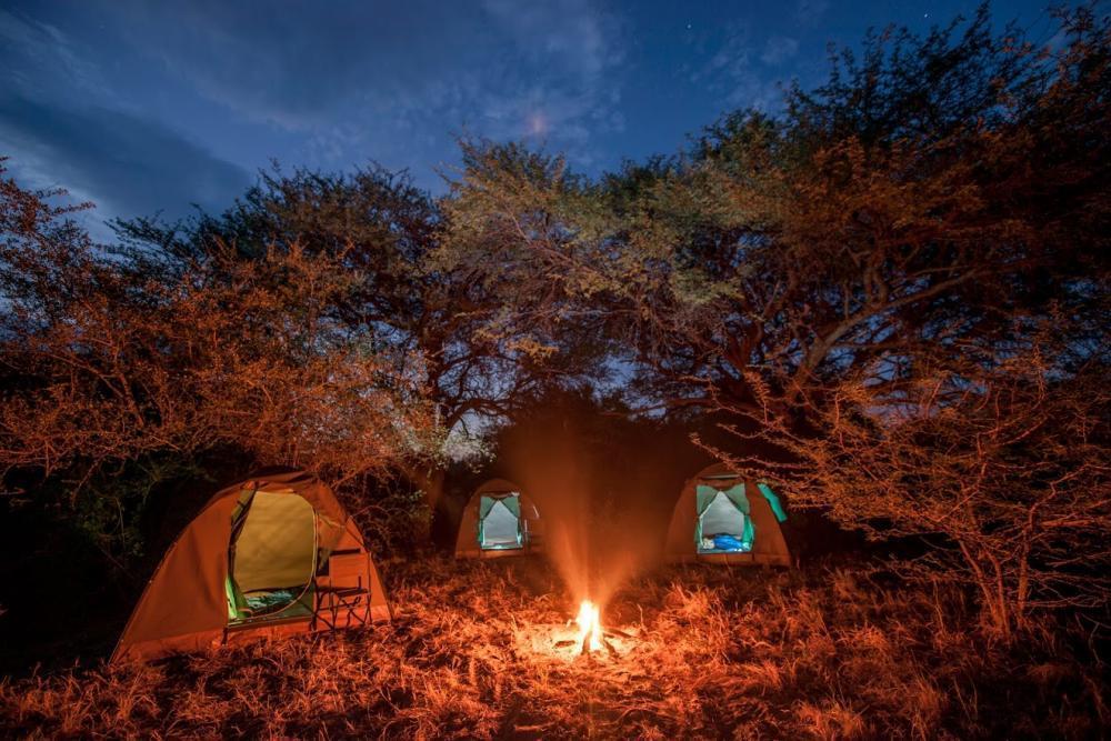 Campen in der Wildnis auf einer geführten Tour