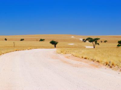 Selbstfahrer Rundreise Namibia, Südafrika und Botswana