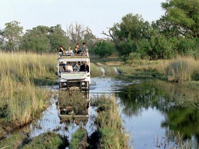 Unterwegs im Nationalpark - Botswana Safari